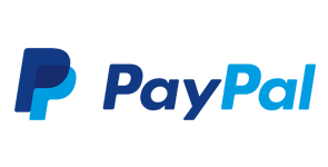 paypal payment icon